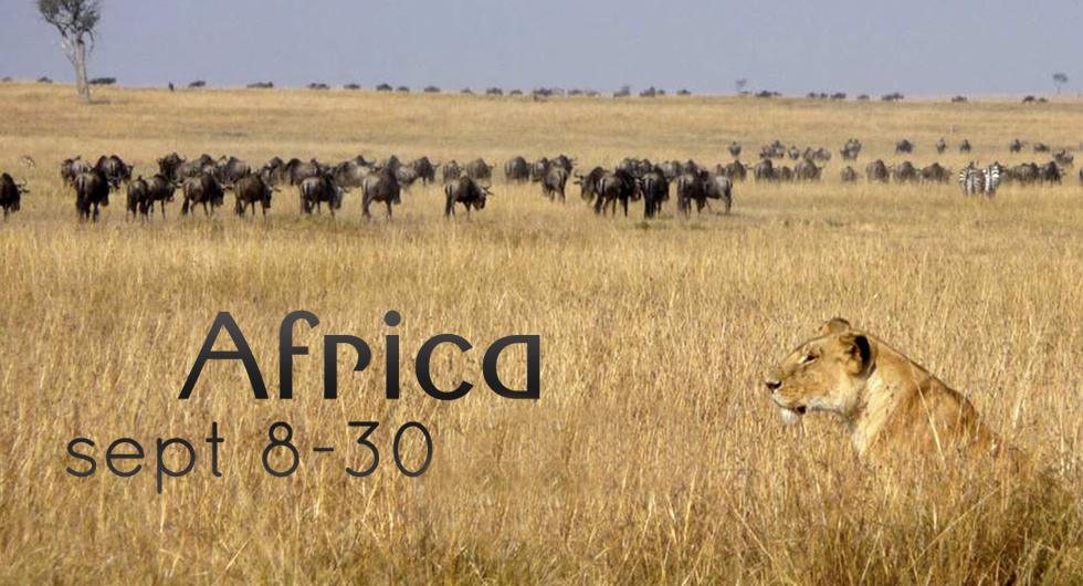 africa-2014-copy4